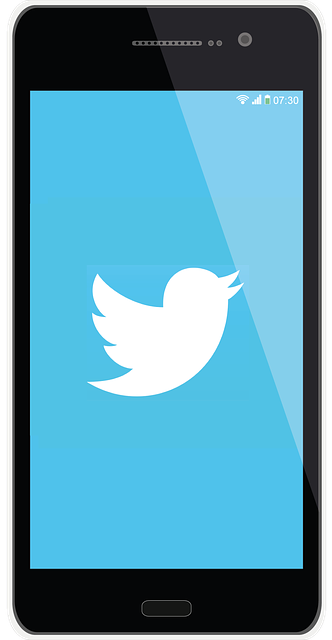 Designing your Twitter Bio 1